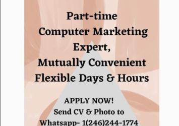 Computer Marketing Expert job in Barbados