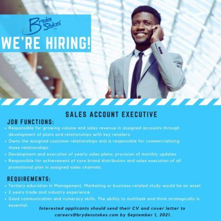 Sales Account Executive job at Bryden Stokes Barbados