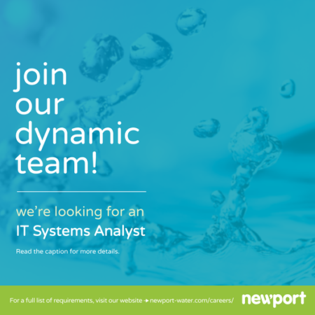 IT Systems Analyst job at Newport Barbados