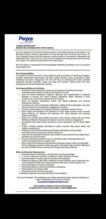 Marketing Coordinator job at Payce Digital in Barbados