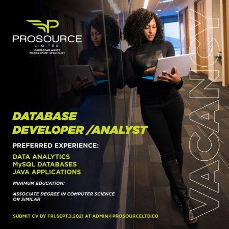 database developer/analyst job in Barbados