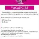 job opportunities in Barbados